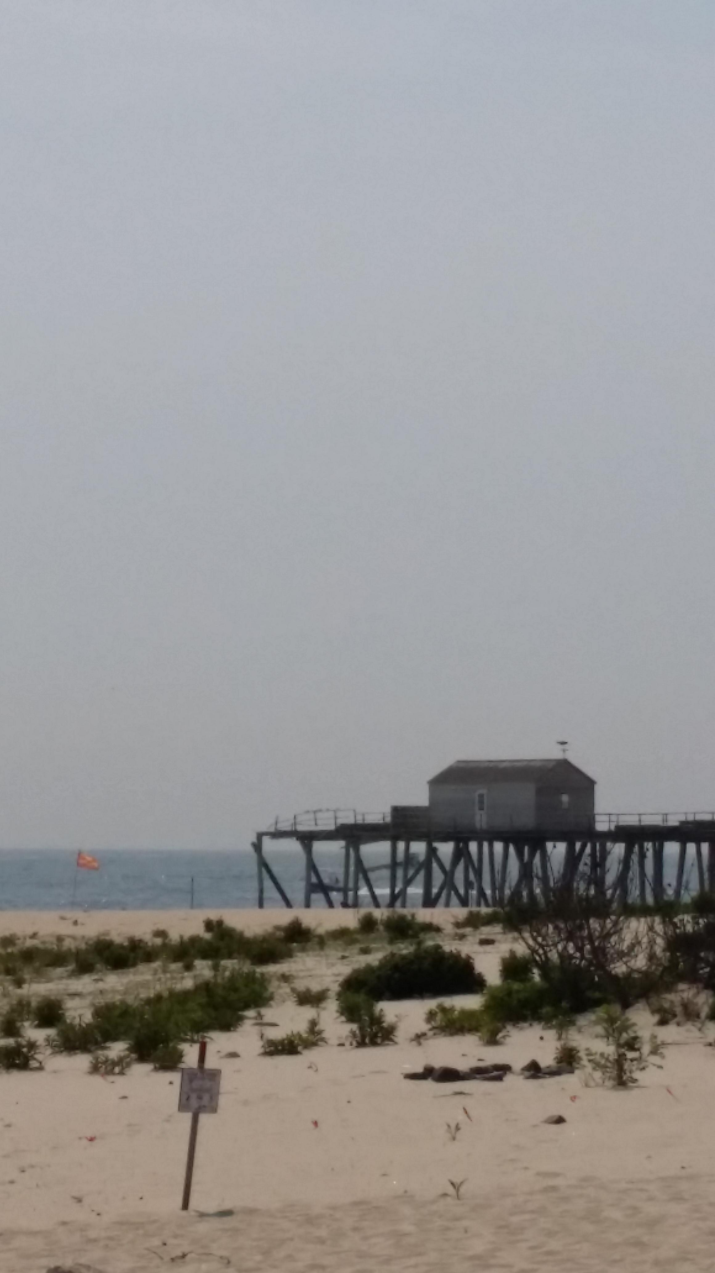 Musings lorrie bowden for Belmar fishing club