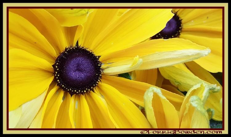 PicsArt_08-28-01.24.58