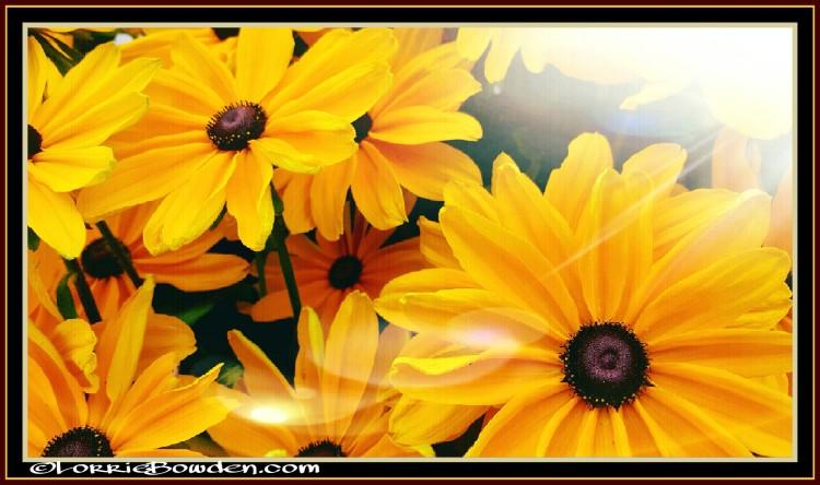 PicsArt_08-28-04.22.59
