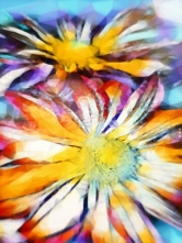 Rainbow-flowers-abstract