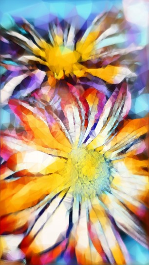 Abstract-colorful-flower