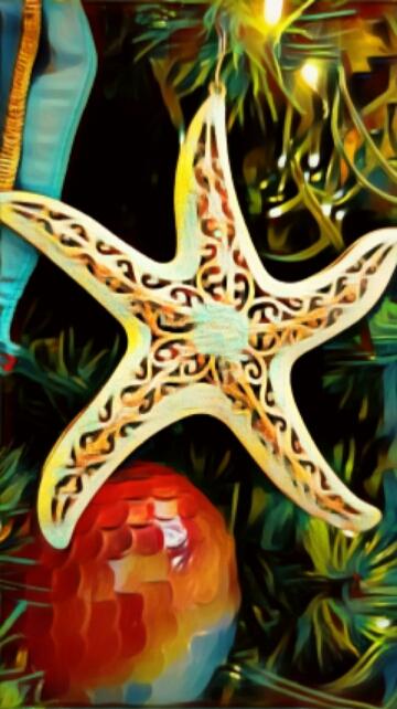 Christmas-Starfish