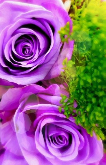 Periwinkle-Rose-Moms-Favorite-Color