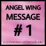 Angel-Wing-Message-1