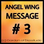 Angel-Wing-Message-3-Orange-background