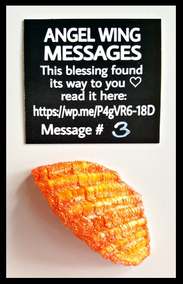 Angel-Wing-Message-3-Orange-black-card