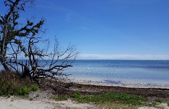 Beautiful-calm-sea